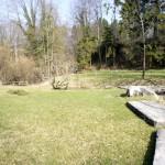 Ruine Friedberg