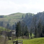 Typische Landschaft. Hügel mit einem einzigen Baum.