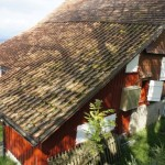 Ferienhaus Müsli