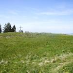 Stockberg: Gipfelkreuz und Fahne