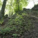 Ruine Schnabelburg