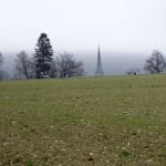 Kirchturm von Niederweningen