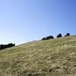 Der Gipfel der Hasenmatt im Blick