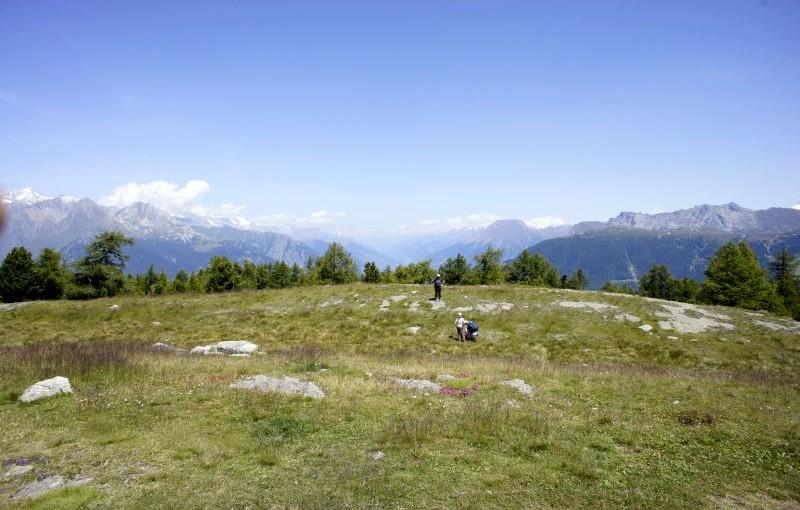Moosalp: Rundwanderung Stand – Bonigersee – Breitmattensee – Bürchner Alp