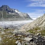 Blick zurück zum Aletsch