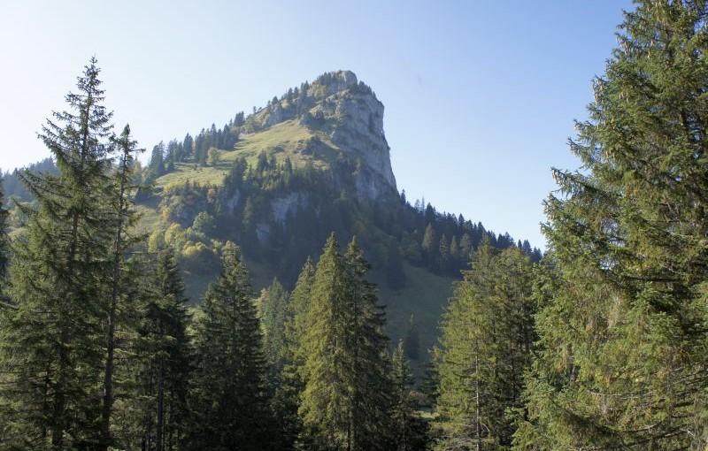Das Ziel in greifbarer Nähe - der Chli Aubrig