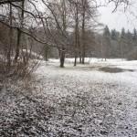 Einsames und stilles Naturschutzgebiet im Winterkleid