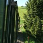 Fahrt mit der Dampfbahn in Richtung Bäretswil