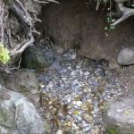Quelle oberhalb der Tüfelschilen