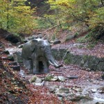 Der Elefant im Bach