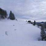 Blick über den gemütlichen Winterwanderweg von Steg aufs Hörnli)