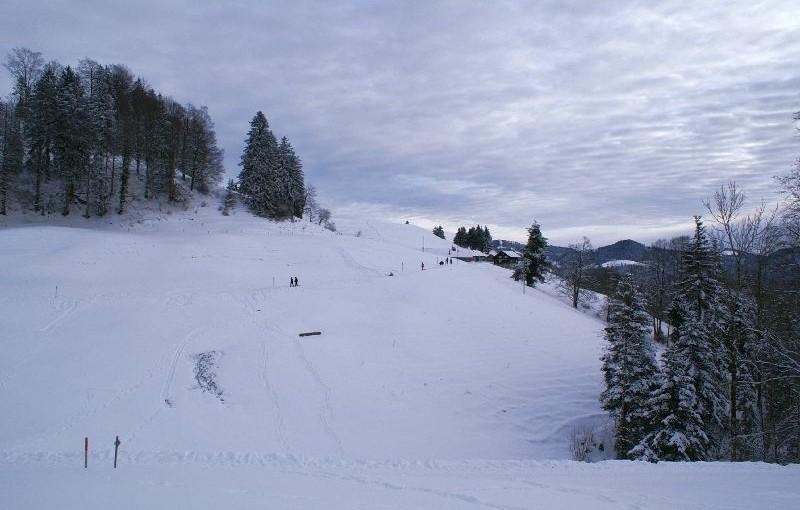 Zürcher Oberland: Das Hörnli, der Winterspassberg