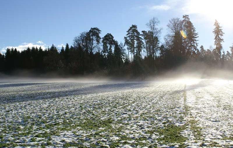 Allgemein: Auch der Winter hat schöne Seiten