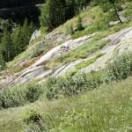 Von Gletschern blank geschliffen
