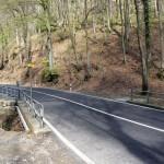 Tükische Strassenüberquerung