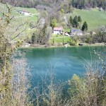 Der Rhein im Frühlingskleid