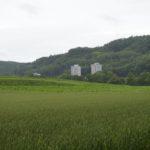 Ausblick über Feld und Flur