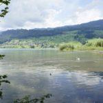 Delta der grossen Melchaa beim Campingplatz in Sarnen