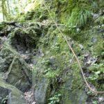 Seil gesicherter Aufstieg