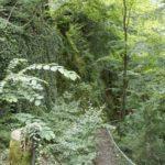 Abstieg zur Lourdesgrotte