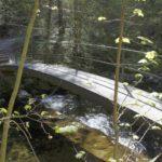 Brücke im Küsnachtertobel
