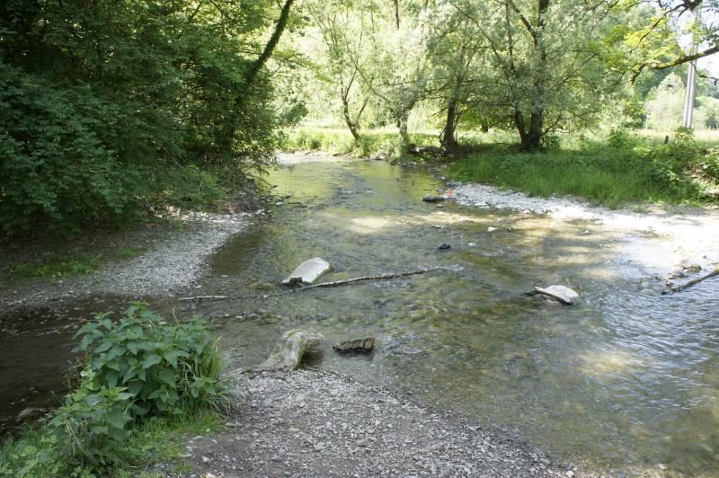 Am Aaabach zwischen Niederlenz und Wildegg