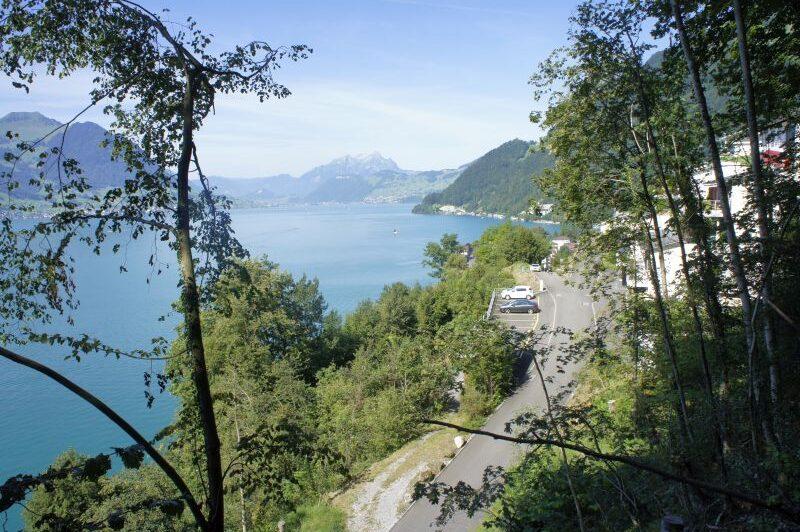 Blick auf See und Vorort von Gersau
