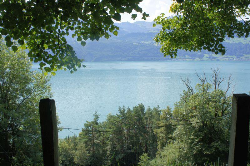 Und immer wieder: Blick auf den See
