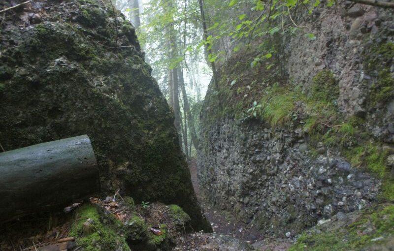 Unterwegs auf dem Waldstätterweg – Etappe 2 von Vitznau nach Küssnacht am Rigi
